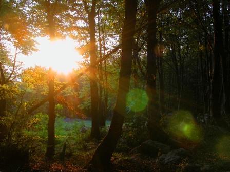 Aaron 1 – Remembering The beginning