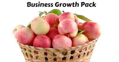 BUsiness Growth Pack Image