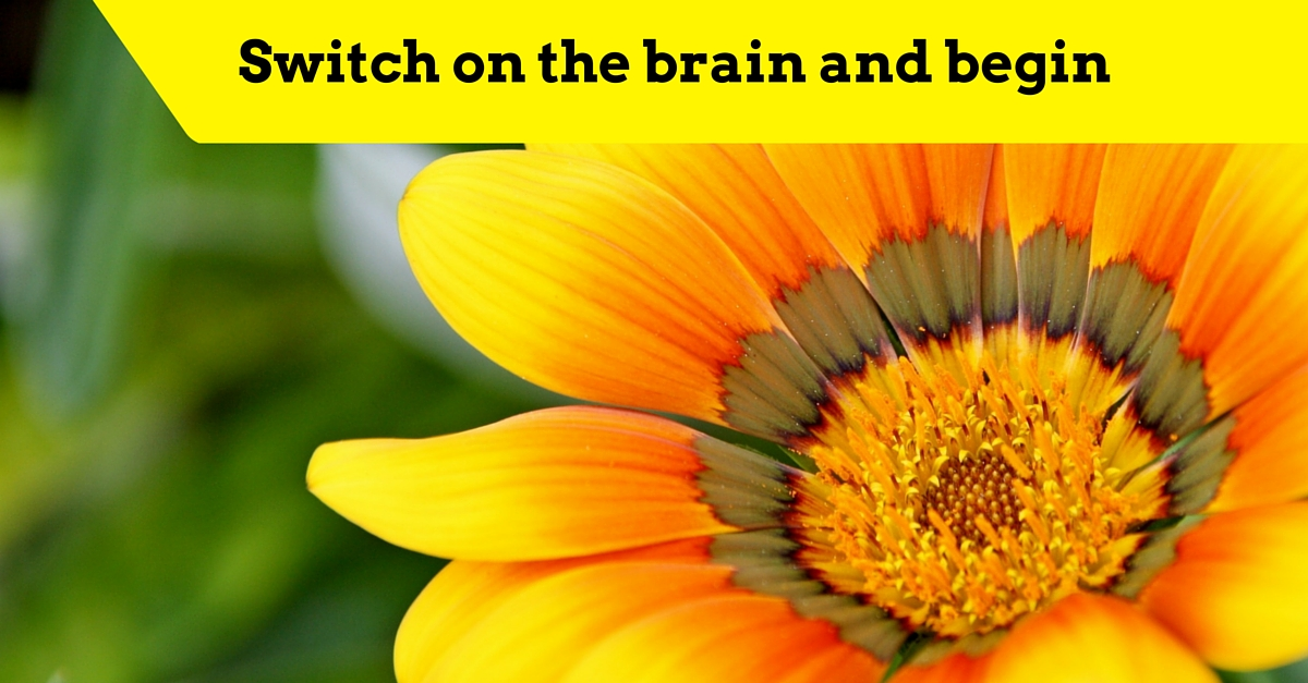 Switch on the brain and begin