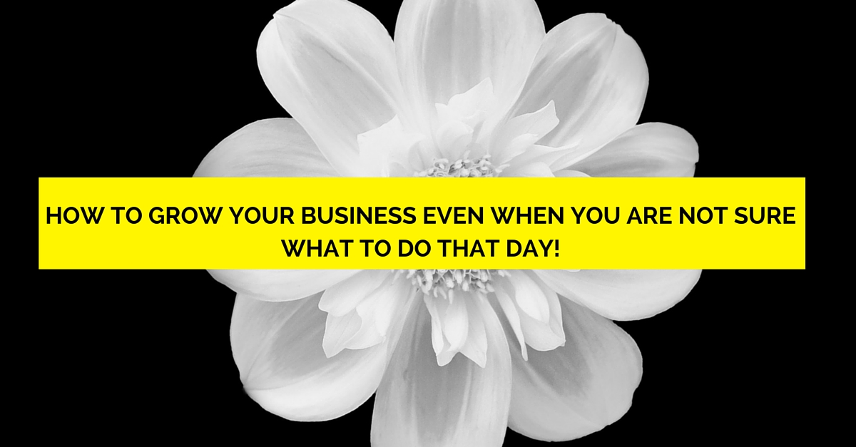 How To Grow Your Business Even When You Are Not Sure What To Do That Day!