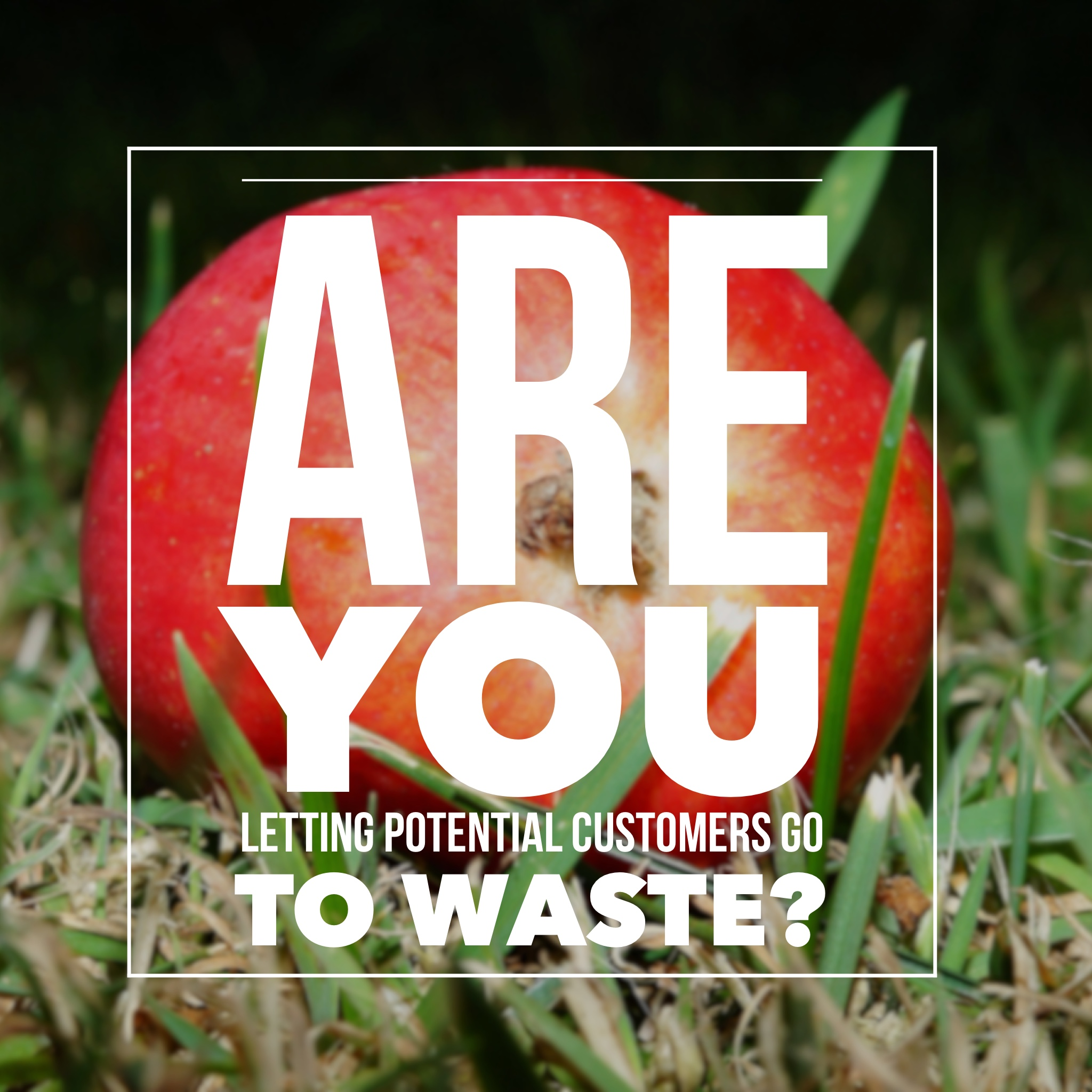 Are You Letting Potential Customers go to Waste?