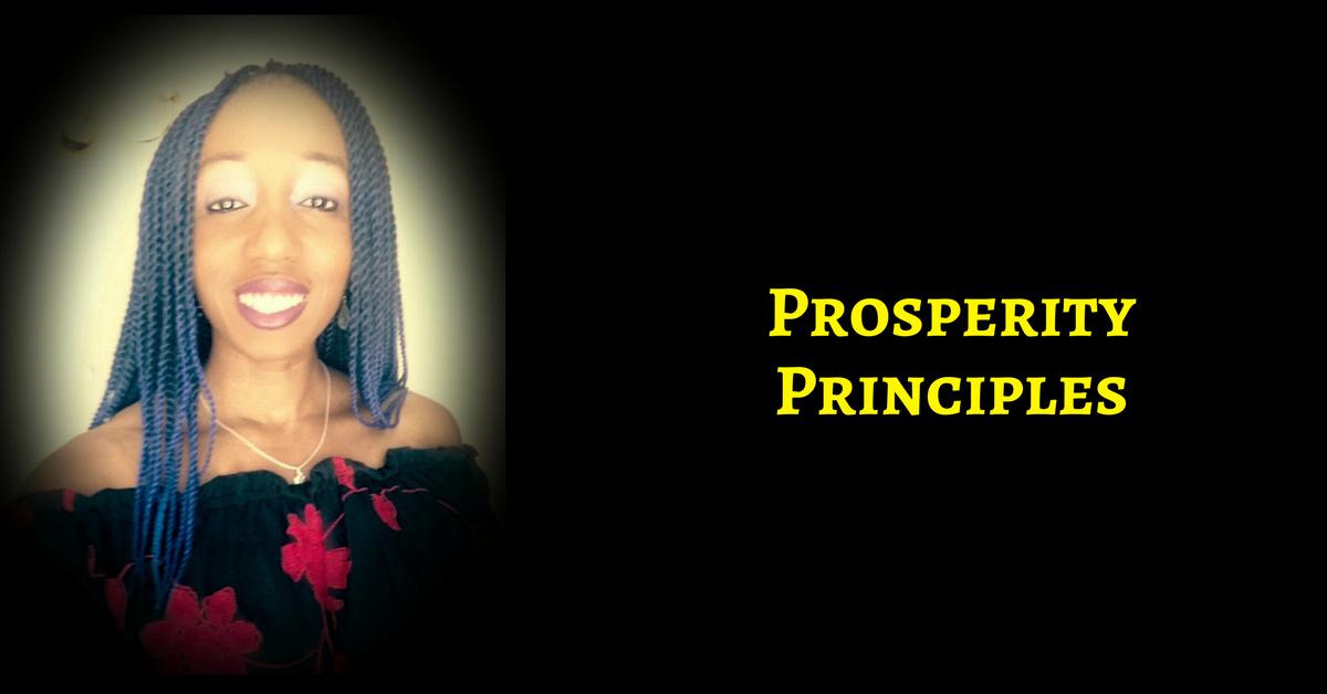 The DELIBERATE MILLIONAIRE Blueprint: 11 Principles To Help You Prosper